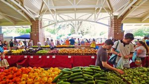 People Enjoying the Farmers Market at the Downtown Pavilion
