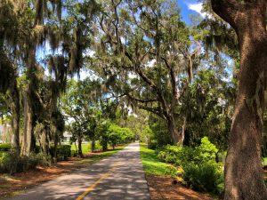 Winter Garden's Famous Oak Trees Along the West Orange Trail