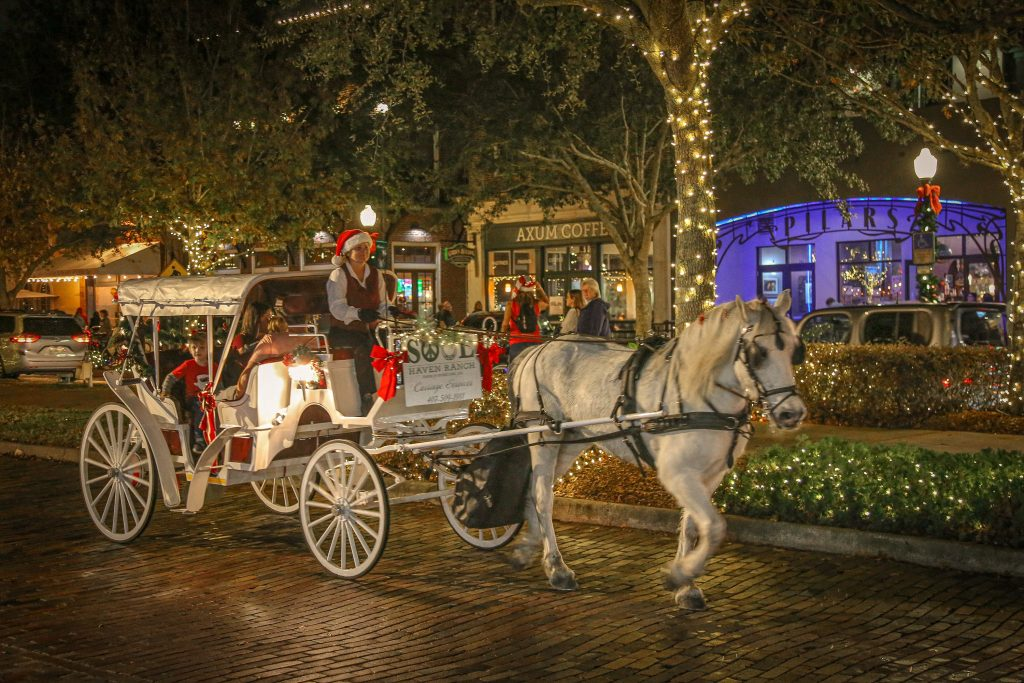 Christmas in Winter Garden Horse Drawn Carriage