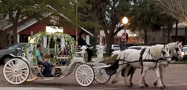 Take a Horse-Drawn Carriage Tour for Valentine's Day in Historic Downtown Winter Garden